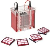 Analytik Jena  Accessories for PAGE Electrophoresis Units Eco-Mini